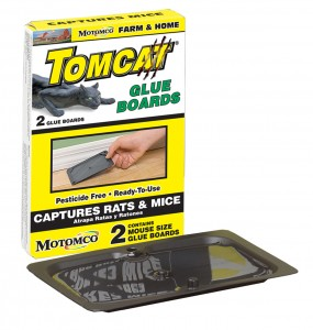 32419 tomcat mouse glue 2pk