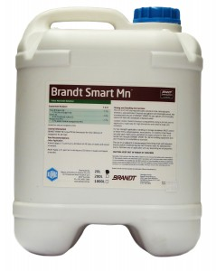 Brandt-Smart-Mn-Packshot