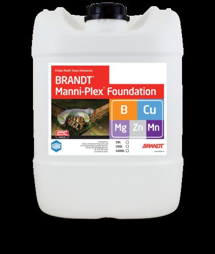 Brandt_Manni-Plex-Foundation