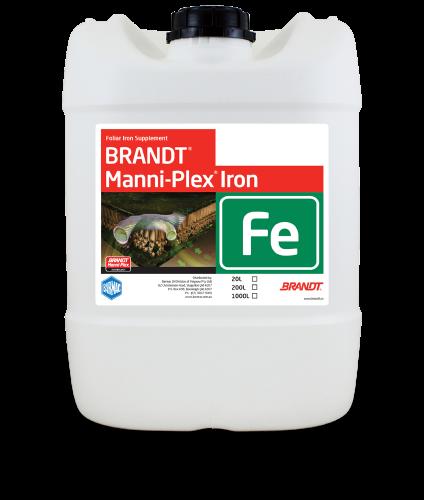 Brandt_Manni-Plex-Iron
