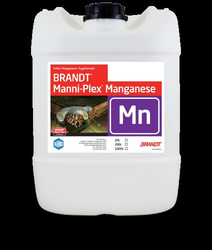Brandt_Manni-Plex-Manganese