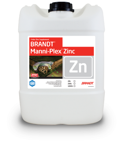 Brandt_Manni-Plex-Zinc
