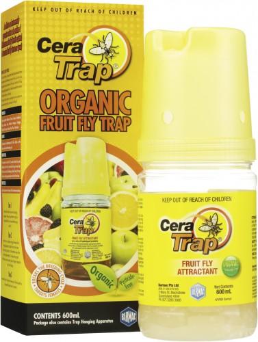 Cera Trap_group1 lighter HR