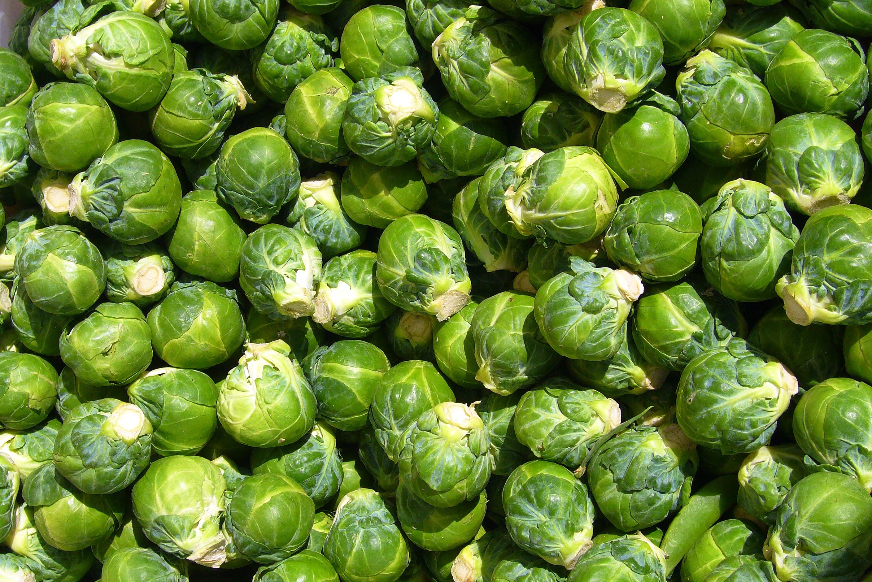 как завязывается брюссельская капуста