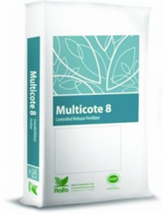 multiocte 8 low p