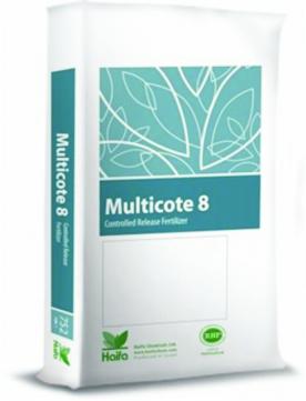 multiocte 8 low p