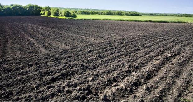 fallow land barmac pty ltd