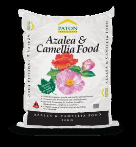Patons_Azalea-Camellia-Food