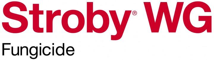 BASF_Product Logo_Stroby WG